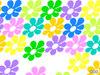 Colors2_4
